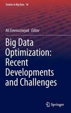Big Data Optimization: Recent Developments and Challenges
