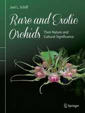 Rare and Exotic Orchids: Their Nature and Cultural Significance
