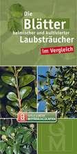 Die Blätter heimischer und kultivierter Laubsträucher im Vergleich