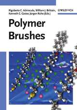 Polymer Brushes: Synthesis, Characterization and Applications