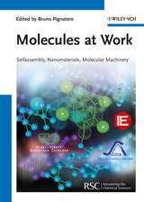Molecules at Work: Selfassembly, Nanomaterials, Molecular Machinery