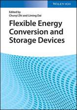 Flexible Energy Conversion and Storage Devices