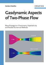 Gasdynamic Aspects of Two–Phase Flow: Hyperbolicity, Wave Propagation Phenomena and Related Numerical Methods