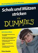 Schals und Mützen stricken für Dummies