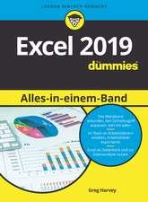 Excel 2019 Alles–in–einem–Band für Dummies