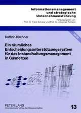 Ein Raeumliches Entscheidungsunterstuetzungssystem Fuer Das Instandhaltungsmanagement in Gasnetzen:  Grundlagen Und Empirische Erkenntnisse