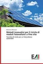 Metodi Innovativi Per Il Riciclo Di Moduli Fotovoltaici a Fine Vita
