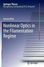 Nonlinear Optics in the Filamentation Regime
