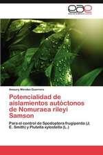 Potencialidad de Aislamientos Autoctonos de Nomuraea Rileyi Samson:  Figurillas de Camelidos En Tumbas Incaicas
