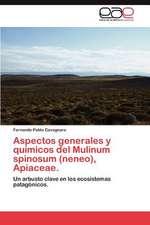 Aspectos Generales y Quimicos del Mulinum Spinosum (Neneo), Apiaceae.
