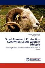 Small Ruminant Production Systems in South Western Ethiopia
