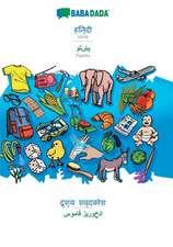 BABADADA, Hindi (in devanagari script) - Pashto (in arabic script), visual dictionary (in devanagari script) - visual dictionary (in arabic script)