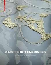 Natures intermédiaires: Les paysages de Michel Desvigne