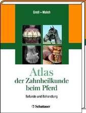 Atlas der Zahnheilkunde beim Pferd