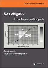 Das Negativ in der Schwarzweißfotografie