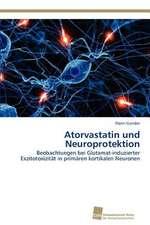 Atorvastatin Und Neuroprotektion:  Measurement and Source Allocation