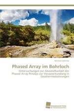 Phased Array im Bohrloch