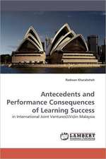 Antecedents and Performance Consequences of Learning Success