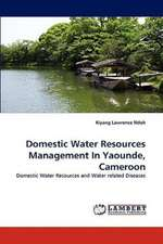 Domestic Water Resources Management In Yaounde, Cameroon