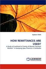 How Remittances Are Used?