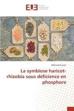 La Symbiose Haricot-Rhizobia Sous Deficience En Phosphore:  District de Do