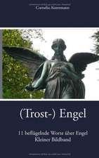 (Trost-) Engel