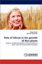 Role of Silicon in the growth of Rice plants