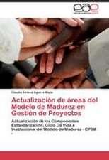 Actualización de áreas del Modelo de Madurez en Gestíón de Proyectos