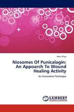 Niosomes Of Punicalagin: An Appoarch To Wound Healing Activity