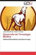 Desarrollo de Tecnologia Medica:  El Teatro Romano de Cartagena