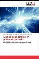 Lineas Espectrales En Plasmas Pulsados:  Experiencia Pedagogica Japonesa