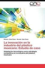 La Innovacion En La Industria del Plastico Mexicano:  Estudio de Caso
