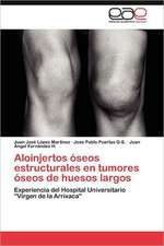 Aloinjertos Oseos Estructurales En Tumores Oseos de Huesos Largos:  Influencia de La Escala Espacial