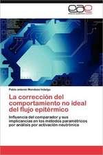 La Correccion del Comportamiento No Ideal del Flujo Epitermico:  Ideas Pedagogicas de Fidel