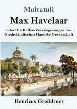 Max Havelaar (Großdruck)