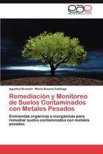 Remediacion y Monitoreo de Suelos Contaminados Con Metales Pesados:  Historia y Literatura
