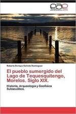 El Pueblo Sumergido del Lago de Tequesquitengo, Morelos. Siglo XIX.:  Porcelana Electrica