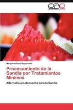 Procesamiento de La Sandia Por Tratamientos Minimos:  Una Hibridacion del Lenguaje Visual Contemporaneo