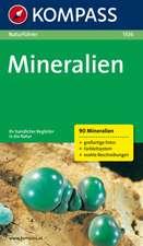 Naturführer Mineralien