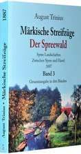 Märkische Streifzüge 1884/1887 - Der Spreewald - Band 3