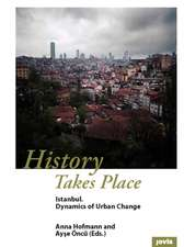 History Takes Place:  Dynamics of Urban Change