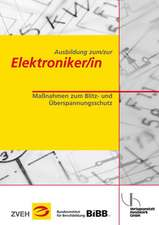 Ausbildung zum/zur Elektroniker/in Bd. 2 - Maßnahmen zum Blitz- und Überspannungsschutz