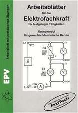 Arbeitsblätter für die Elektrofachkraft für festgelegte Tätigkeiten