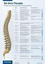 Die Dorn-Therapie. Poster 59,4 x 84 cm