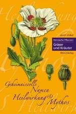 Heimische Pflanzen 02. Gräser & Kräuter