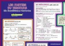 mindmemo Lernposter - Les parties du discours - Die französischen Wortarten - Zusammenfassung