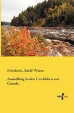 Ansiedlung in den Urwäldern von Canada