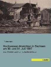 Hochwasser-Ansichten in Sachsen am 30. und 31. Juli 1897