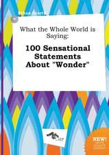 What the Whole World Is Saying: 100 Sensational Statements about Wonder