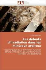 Les défauts d'irradiation dans les minéraux argileux
